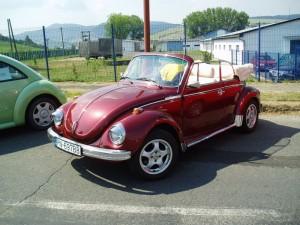 VW_zraz_Pieniny_2006_-_050_(29.7.2006)_(zraz)